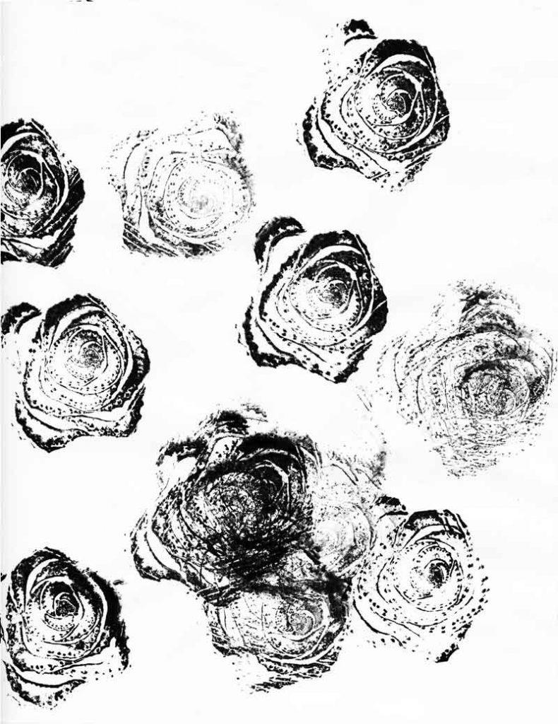 celeryrose_01